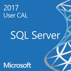 SQL Server 2017 Standard Single  User CAL OLP