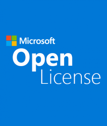 OneDrive for Business Plan 1 Open