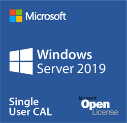Windows Server 2019 20  User CALs  Only  OLP/SA